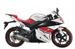 Запчасти для мотоциклов VENOM BLADE VM200-10