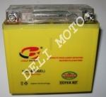 Аккумулятор VIPER V200CR/V250CR