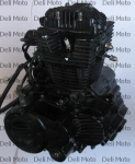 Двигатель в сборе VIPER ZS200N  с баланс валом (СB200)