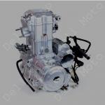 Двигатель водяное охлаждение трицикл  MUSSTANG 200-4V (200 кубов